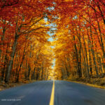 Speeding Fall- Alessandro Cancian Photography
