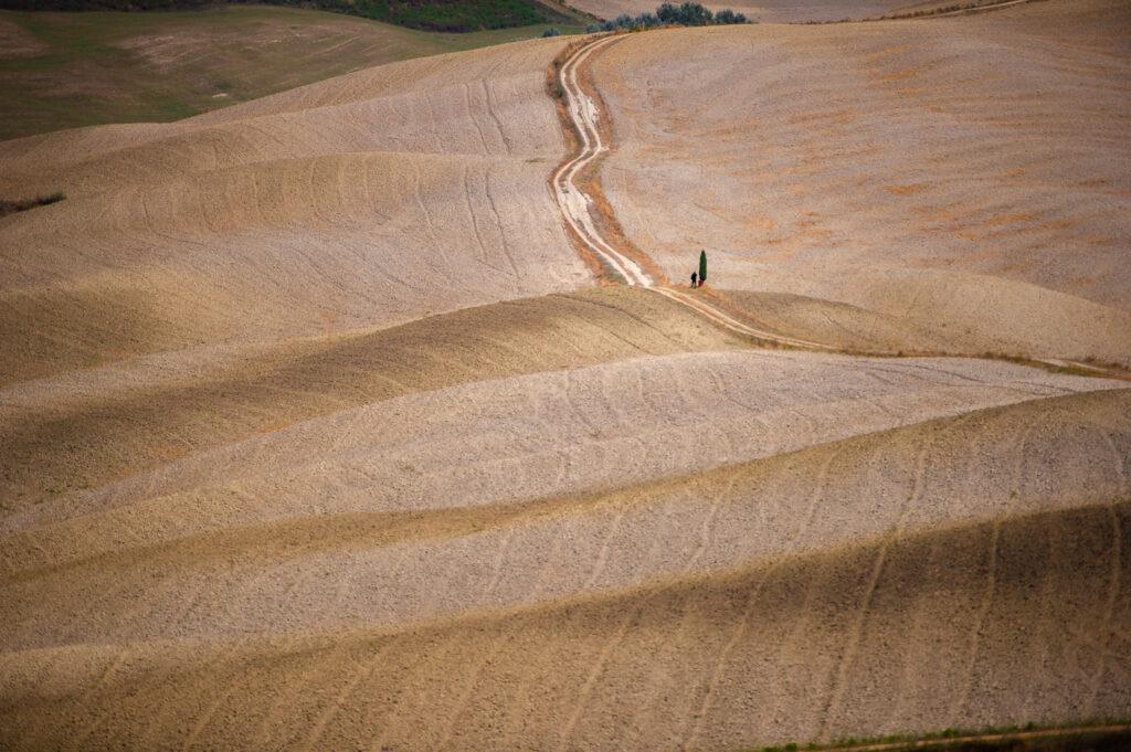 Val D'orcia - Tuscany - Alessandro Cancian Photography